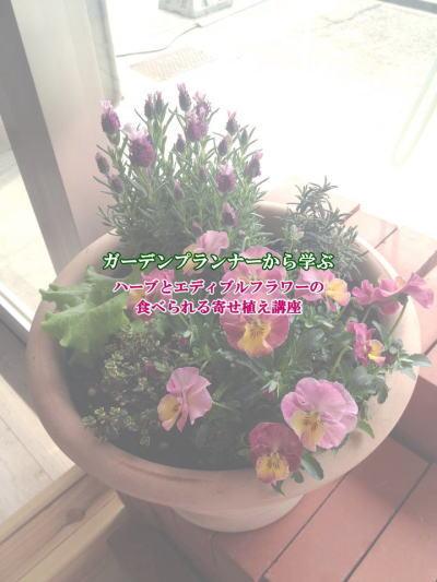 edible_flower.jpg